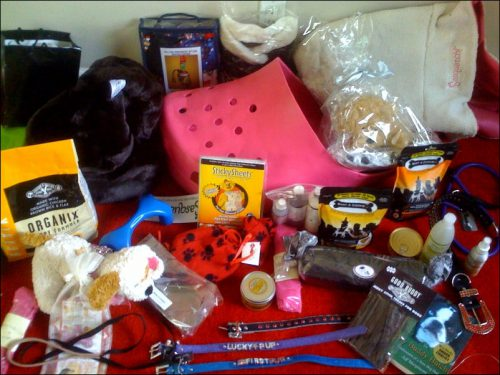 wow-creations-dog-gift-basket