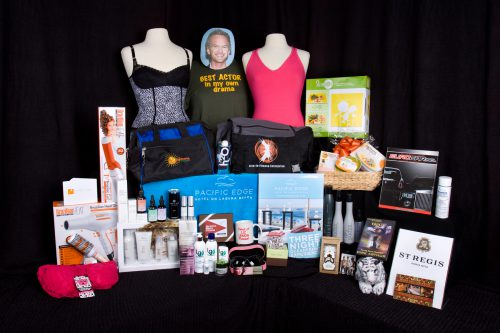 distinctive-assets-2009-emmy-nominee-gift-bags
