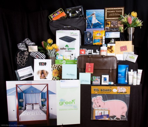 2010-oscar-gift-bag-distinctive-assets