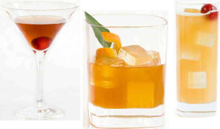 Wild Turkey Bourbon cocktail drink recipes