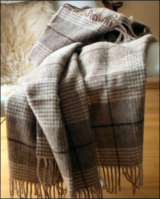 holiday gift guide 2014 women linen throw