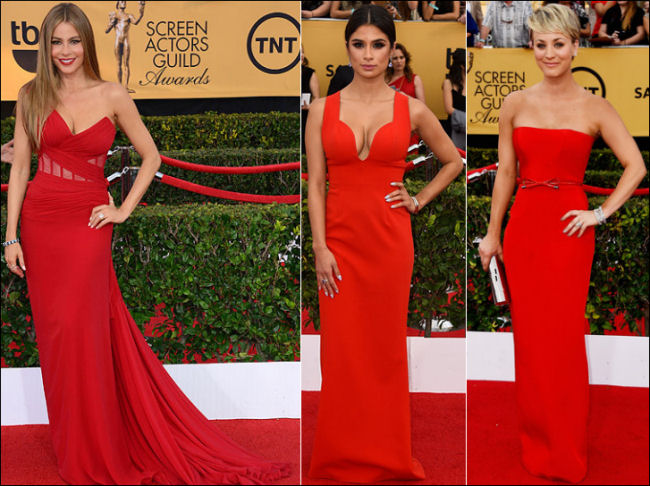 2015 sag awards red carpet dresses red gowns